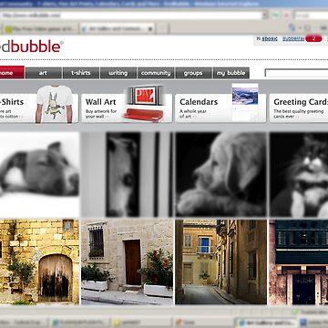 All things maltese  by sbosic
