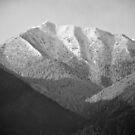 Pirin mountain by Ivo Velinov