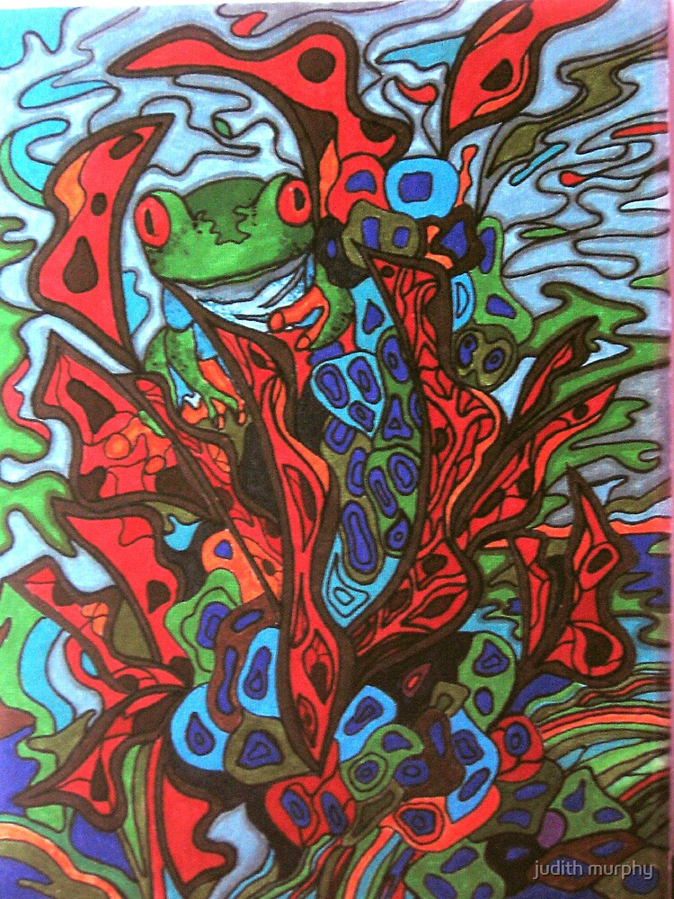 Red tree frog by judith murphy