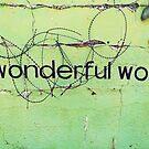 A wonderful world by heinrich