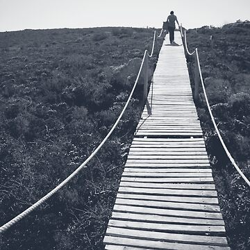 Adventure by lightwanderer