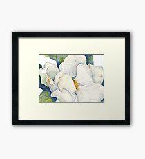 Magnolia Full Bloom Framed Print