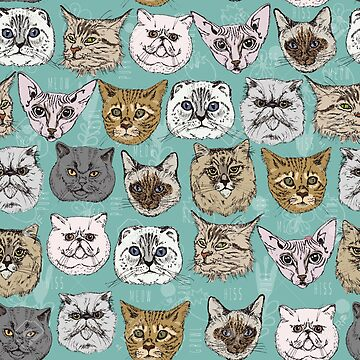 Cats by Isch