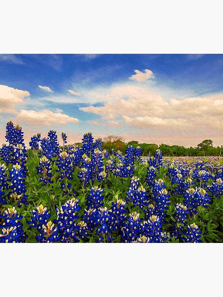 Bluebonnet Texas by ErianAndre