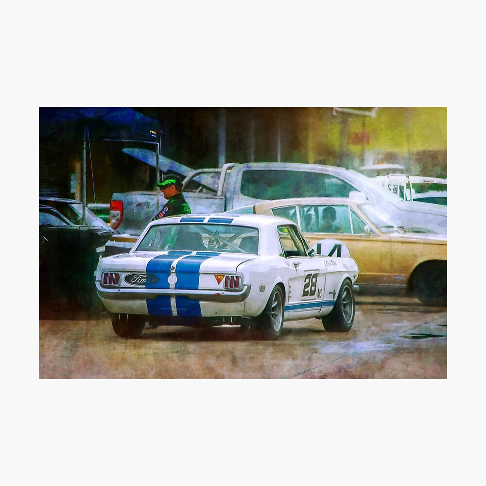 Mustang in the Paddock Photographic Print