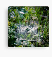 Dewy Web Canvas Print