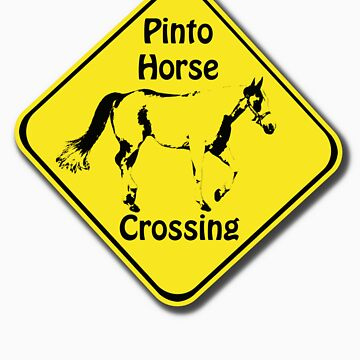Pinto Crossing by photokarazy