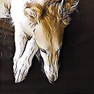 Stunning Borzoi Head by Happy Dog Swag