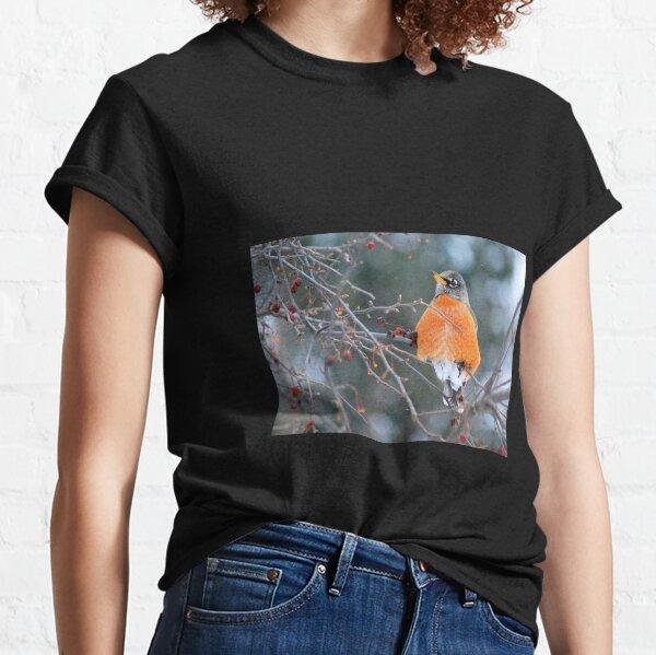 Robin in Winter #3 Classic T-Shirt