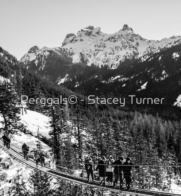 sky pilot suspension bridge by Perggals© - Stacey Turner