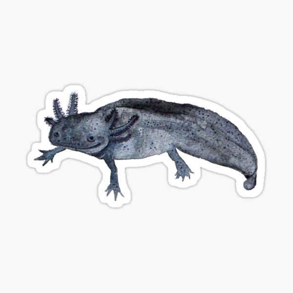 Cheol das Axolotl Sticker