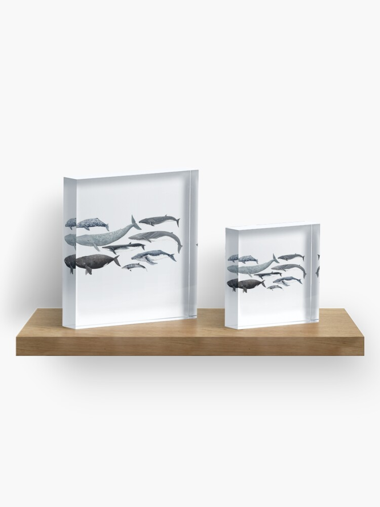 Alternate view of Whales and right whale Acrylic Block