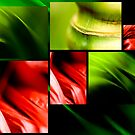 Red Green textures by Alex Evans