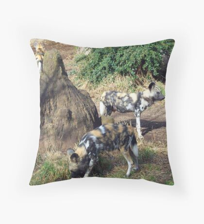 African Wild Dogs Throw Pillow