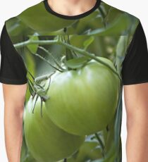Green Tomatoes on the Vine Graphic T-Shirt