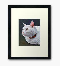 Shiro Framed Print