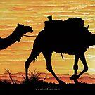 Australian Sunsets Camel train by iancoate