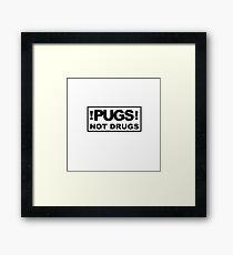 PUGS! not drugs Framed Print