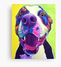 Happy Pit Bull - Smiling Colorful Pitbull Dog Canvas Print