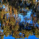 Reflections on Water by robcaddy