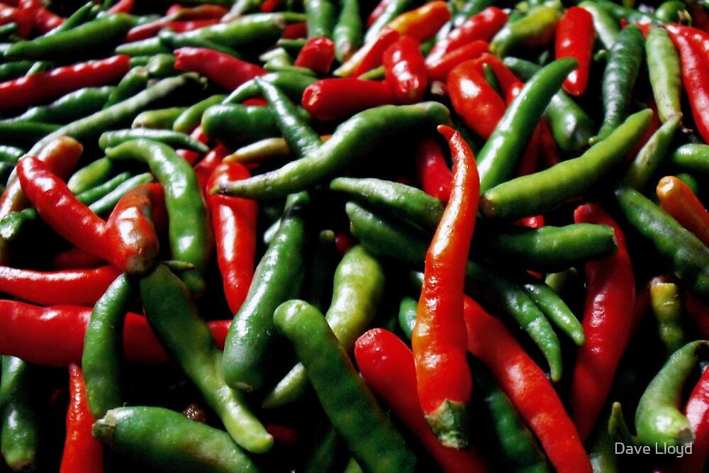 Spicy ... by Dave Lloyd
