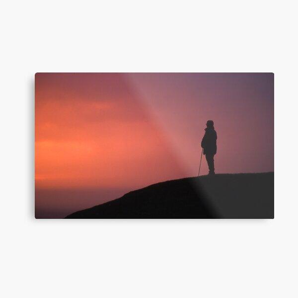 Sunset Sentinel Metal Print