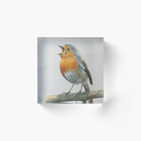 Robin singing Acrylic Block