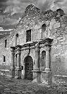 The Alamo by Alex Preiss
