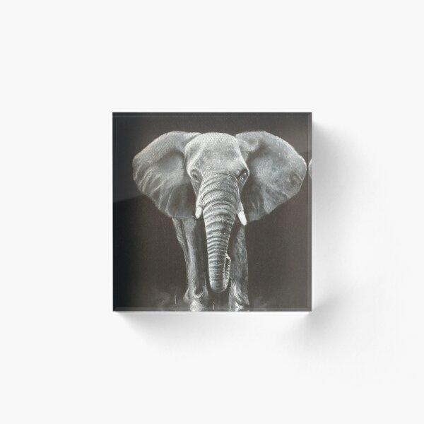 African Elephant Acrylic Block