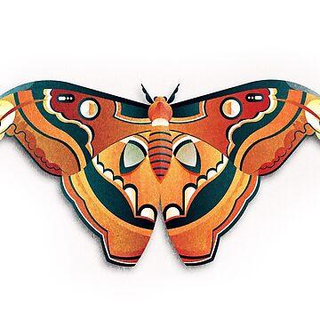 Atlas Moth by jamesboast