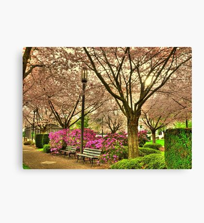 Spring day at the State Park Salem Oregon Canvas Print