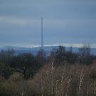 emlymoor mast by ian taylor