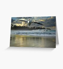 1141-Emergency Landing (Storm) Greeting Card