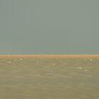 All at Sea by Geraldine Lefoe