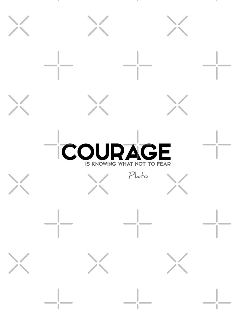 courage is knowing what not to fear - plato by razvandrc