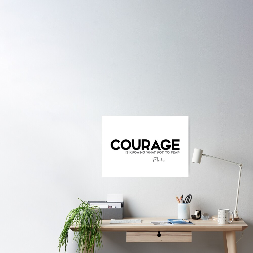 courage is knowing what not to fear - plato Poster