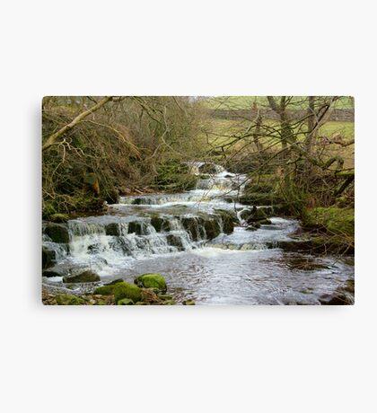 The Falls #4 Canvas Print
