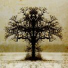 Symmetry Tree #5 by amira