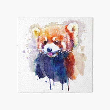 Red Panda Portrait Art Board Print
