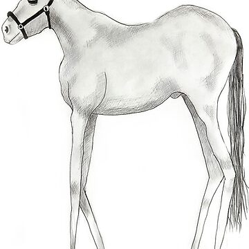 Dali Horse by hauscat