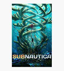 Lámina fotográfica subnautica 2