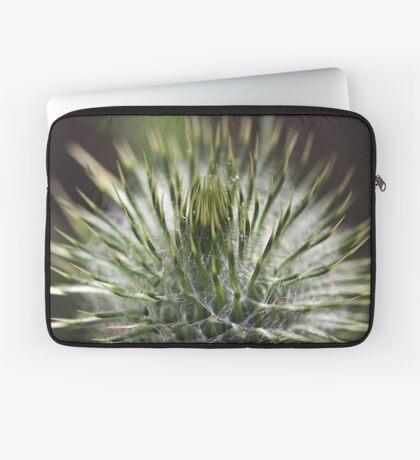 Round Green Thistle Bud Laptop Sleeve