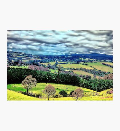 Let's Go To The Hills Photographic Print