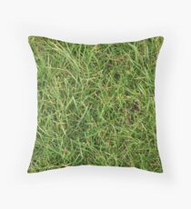 Herbe Coussin
