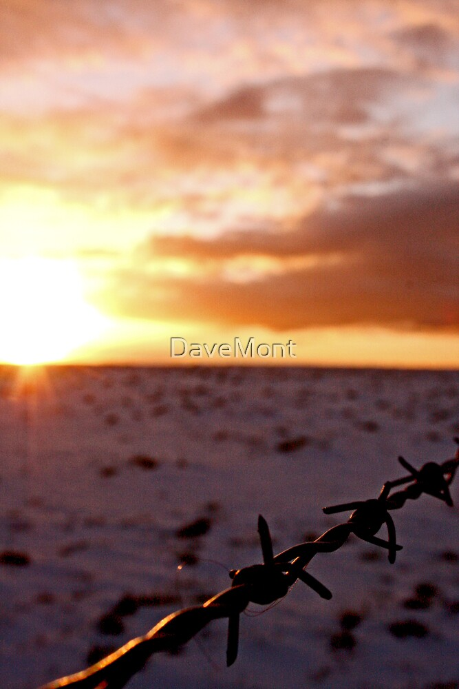 Snowy Sunset by DaveMont
