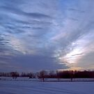 Enchanted Winter Evening by Daniela Weil
