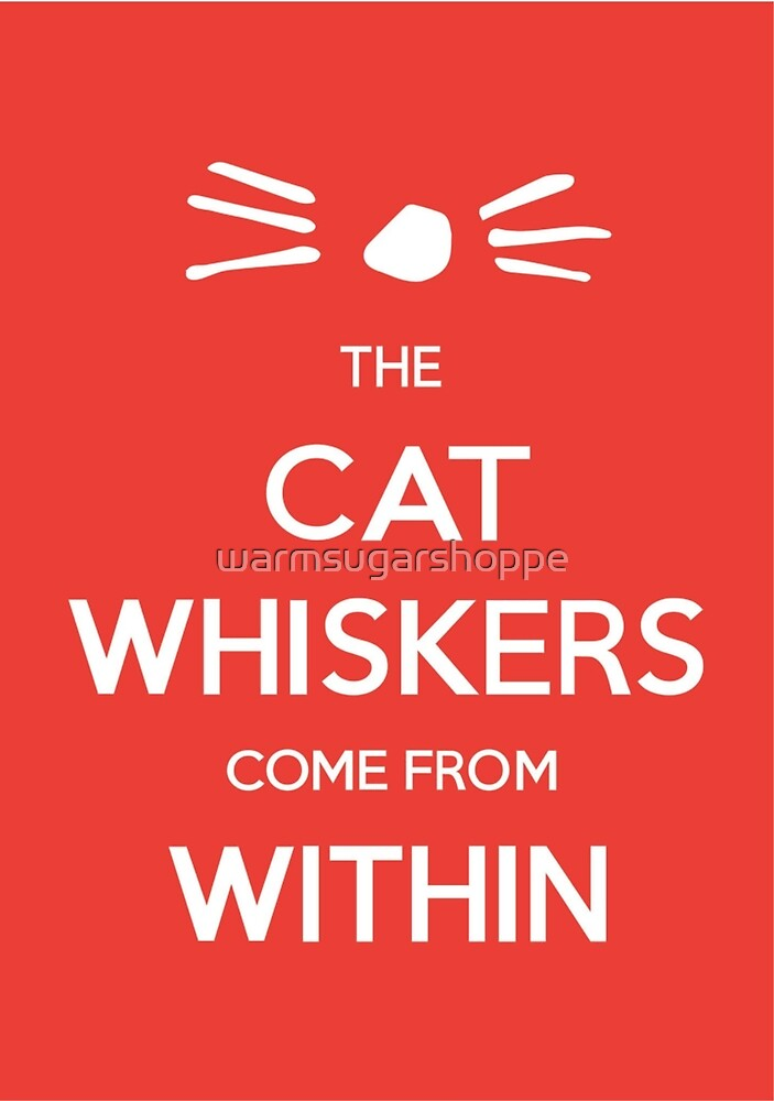 Dan and Phil - Cat Whiskers by warmsugarshoppe