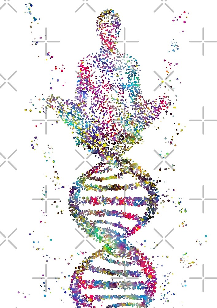 Yoga pose, DNA yoga pose, DNA molecule by Rosaliartbook