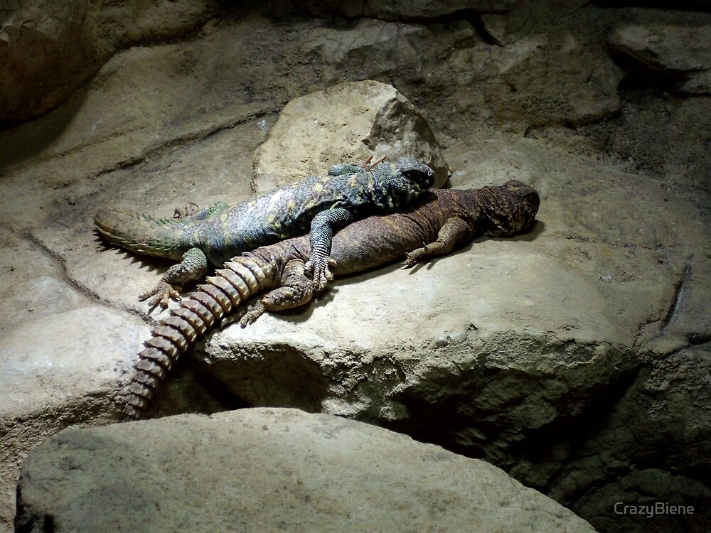 Cuddle up with reptiles by CrazyBiene