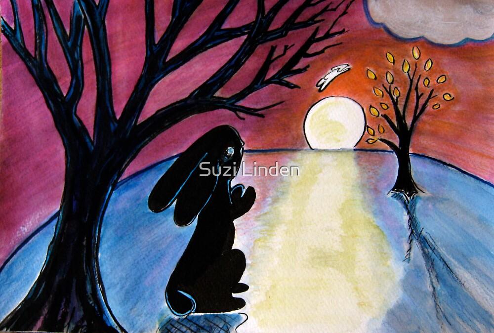 Rabbit Sunset by Suzi Linden